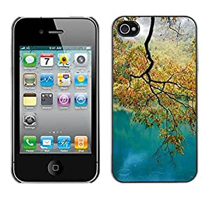 Omega River Autumn Fall Tree Leaves Golden Snap On Hard Back Case Cover Shell For Apple Iphone 4 / 4S