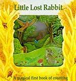 Little Lost Rabbit Bb (Magic Window Books)