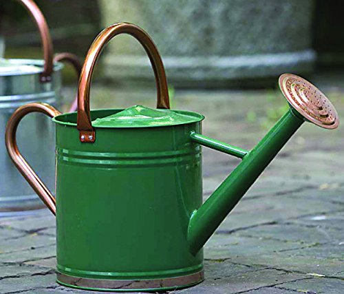 Gardman 8327 Hunter Green Galvanized Steel Watering Can with Copper Accents, 1-Gallon 1