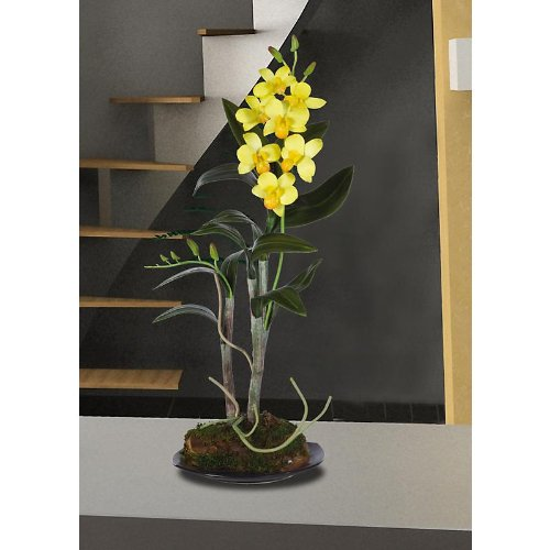 Nearly Natural 4321-YL Dendrobium with Black Circle Dish