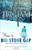 Home to Big Stone Gap: A Novel (Big Stone Gap Novels)
