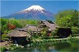 2000ピース 忍野の富士山 RS-20-20