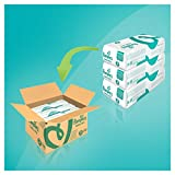 Product Image of Pampers Baby-Dry Nappies Monthly Saving Pack