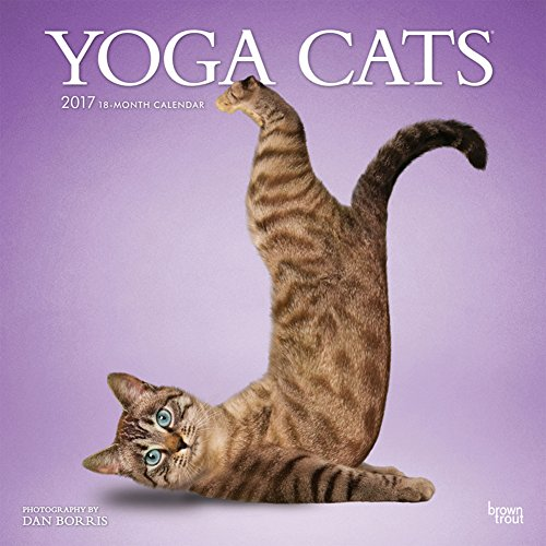 yoga-cats-2017-calendar-12-x-12in