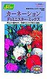 カネコ種苗 草花タネ209 カーネーションF1ミニスターミックス 10袋セット