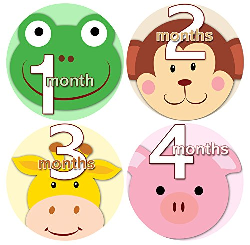 ANIMAL FACES 1-12 Months Baby Monthly One Piece Stickers Baby Shower Gift Photo Shower Stickers