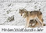 Mit dem Wolf durch's Jahr (Tischkalender 2017 DIN A5 quer): Faszinierende Momentaufnahmen aus dem Le