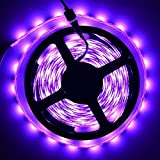 Zuwit 5M/Roll SMD 5050 Horce Race Chasing Chase Light Strip Pattern Dream color Waterproof Christmas Wedding Home Party DC12V 2811IC Strip Self-Propelled No Remote Needed