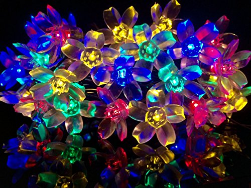 Jobelle Solar Fairy Blossom Lights 4.9 Out Of Five Stars Outdoor Indoor Waterproof 22 Foot 50 LED Flower Garden Lawn Patio Party Holiday Christmas Wedding Decorative On/Off and Mode Switches String Lights (Multi Color) 100% Money Back Guarantee