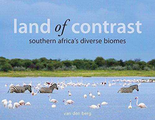 Land of Contrast: Southern Africa's Diverse Biomes