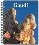 DR-14 GAUDI