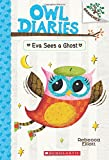 img - for Owl Diaries #2: Eva Sees a Ghost (A Branches Book) book / textbook / text book