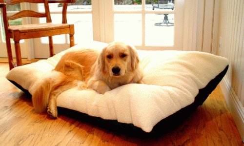 Extra Large Rectangle Dog Pet Bed