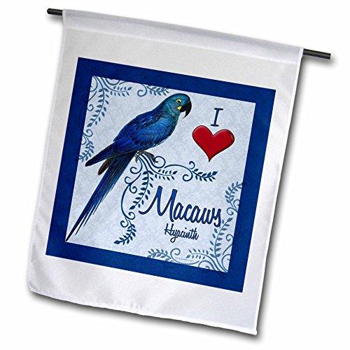 3dRose fl_38779_1 I Love Are Parrot in giacinto da giardino, colore: blu bandiera, 12 x 18 cm
