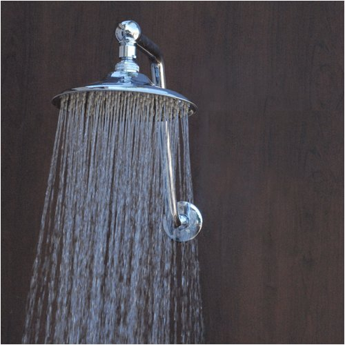Alantis 2 Rain Showerhead with arm, chrome (Swiveling Shower Head compare prices)