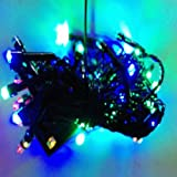 A To Z Traders -(Pack Of 1) Fancy Multicolor LED Rice Light Serail Bulbs Lamp For Diwali/Home Decoration And (... - B016J3NHQ0