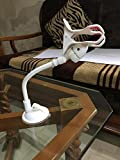 #7: PRAVARA Short Arm 360 Degree Rotatable Windshield Car Mobile Tablet Holder Double Clip Clamp for SmartPhones / GPS / Pad Placing Plate - White