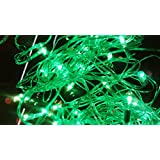 Blackberry Overseas Decorative GREEN COLOR Rice LED Lights, 7 Metre Long