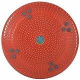 Aarogya Mandir Body Weight Reducer Twister (Multi Color)