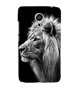 LION A POWERFULL CREATION OF NATURE 3D Hard Polycarbonate Designer Back Case Cover for Meizu MX5 :: Meizu Mx 5