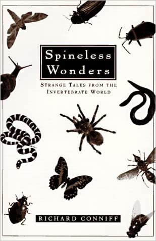 Spineless Wonders: Strange Tales from the Invertebrate World
