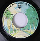 Ambrosia 45 RPM How Much I Feel / Ready For Camarillo