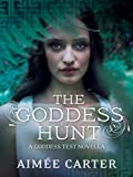 Goddess Hunt (Goddess Test) by Aimée Carter