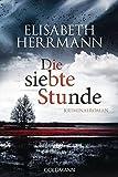 Image de Die siebte Stunde: Roman (Joachim Vernau, Band 2)
