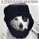 Thousand Hounds Calendar (0789307901) by RIZZOLI