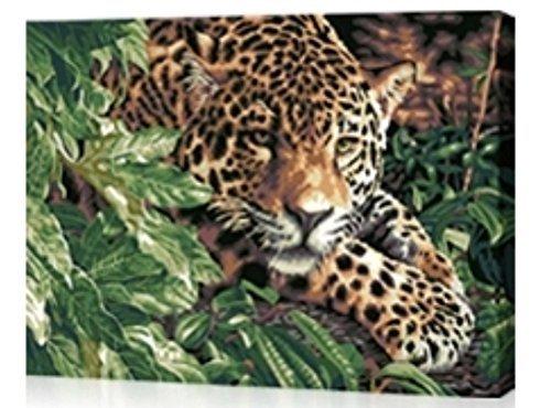 Buy Cheetah Oil Now!
