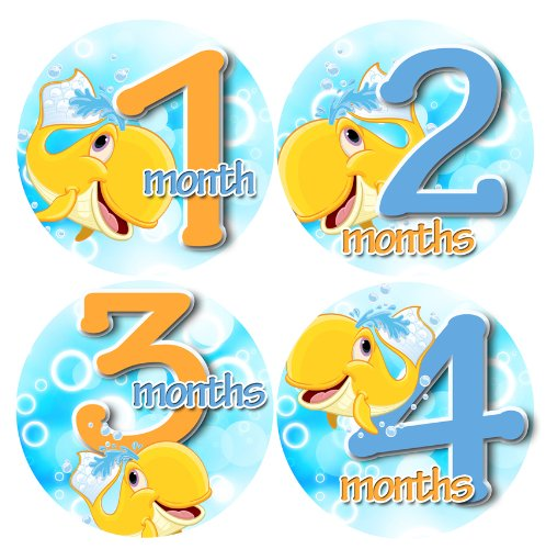 WHALES SPLISH SPLASH SQUIRT Baby Month By Month Stickers - Baby Month Onesie Stickers Baby Shower Gift Photo Shower Stickers - 1