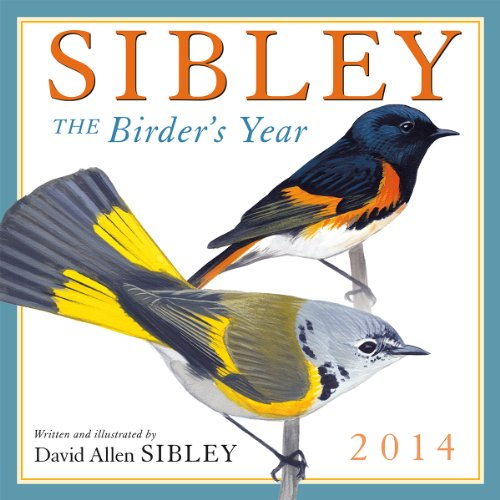 Sibley: The Birder's Year 2014 Wall (calendar)