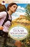 img - for TEXAS WILDFLOWERS (Romancing America) book / textbook / text book