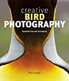 Creative Bird Photography: Essential Tips and Techniques
