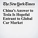 China's Answer to Tesla Is Hopeful Entrant to Global Car Market | Michael Schuman