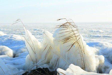 Outdoor - Leinwandbild Winter am Meer 70 x 50 cm