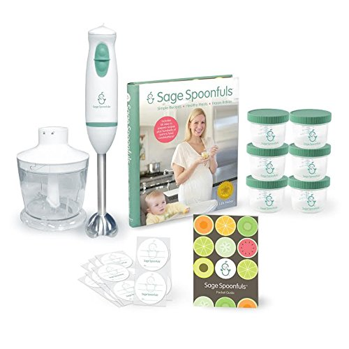 "Baby Food Maker -""Homemade Essentials Package"" - Includes Immersion Blender And Food Processor, Jars, Labels And Recipe Book"