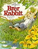 Adventures of Brer Rabbit Hb