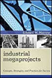 img - for Industrial Megaprojects: Concepts, Strategies, and Practices for Success   [INDUSTRIAL MEGAPROJECTS] [Hardcover] book / textbook / text book