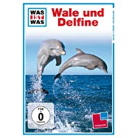 WAS IST WAS TV: Wale und