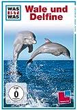 WAS IST WAS TV: Wale und Delfine
