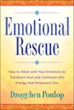 Emotional Rescue: How to Work with Your Emotions to Transform Hurt and Confusion into Energy that Empowers You