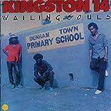 Kingston 14
