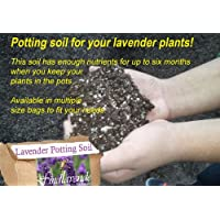 Lavender Potting Soil