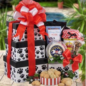 Paw Print Party Dog EASTER Gift Basket