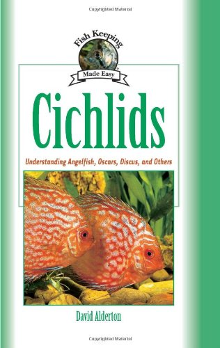Cichlids: Understanding Angelfish, Oscars, Discus, and Others