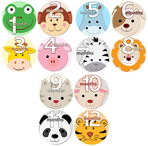 ANIMALS FACES Baby Boy Girl Monthly Onesie Stickers Baby Month Onesie Stickers Baby Shower Gift Photo Shower Stickers, safari jungle monkey hippo cat dog lion tiger zebra
