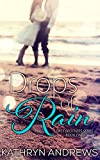 Drops of Rain (Hale Brothers Series Book 1) (English Edition)