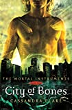 The Mortal Instruments - City of Bones - Book One - Cassandra Clare Art Print Poster