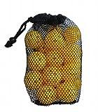 野球 ソフトボール バッティング 練習ボール 軽量 20個 セット 小さめ ボール で 集中力 アップ 専用 キャリーバッグ 付